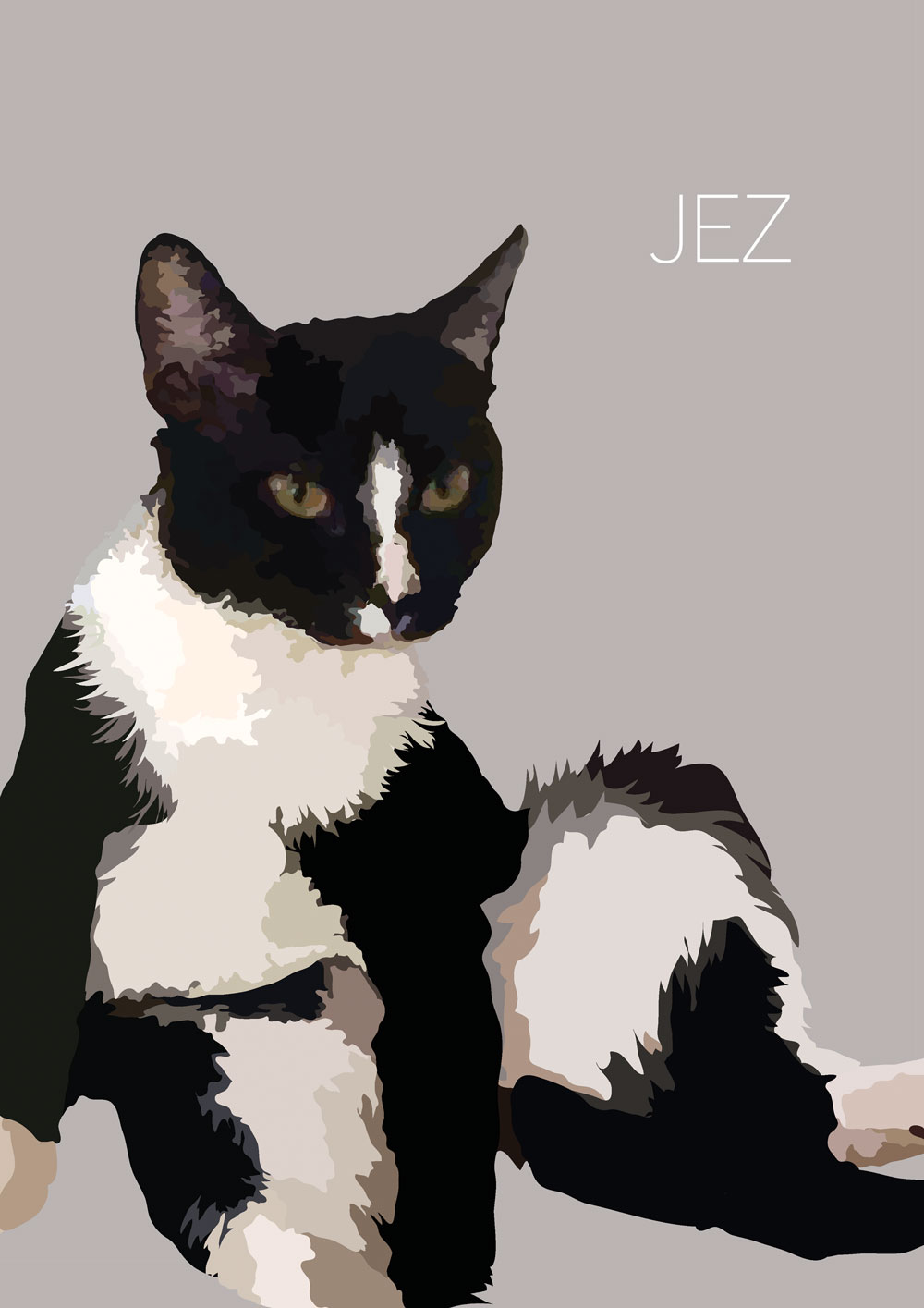 Jezweb